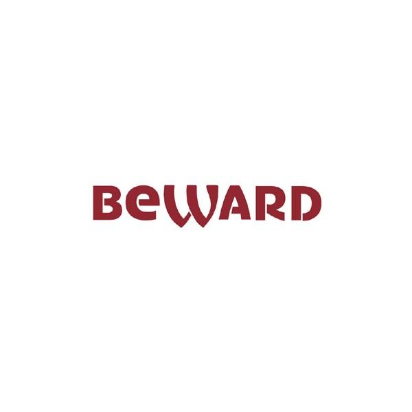 Видеорегистраторы | BEWARD